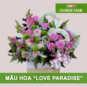 hoa sinh nhật love paradise