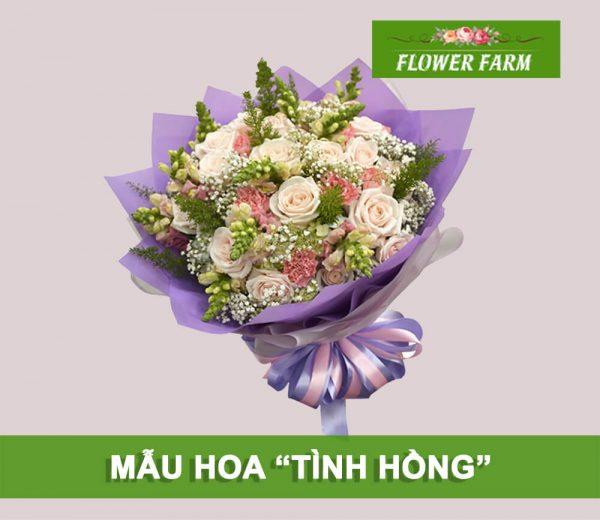 hoa tình hồng