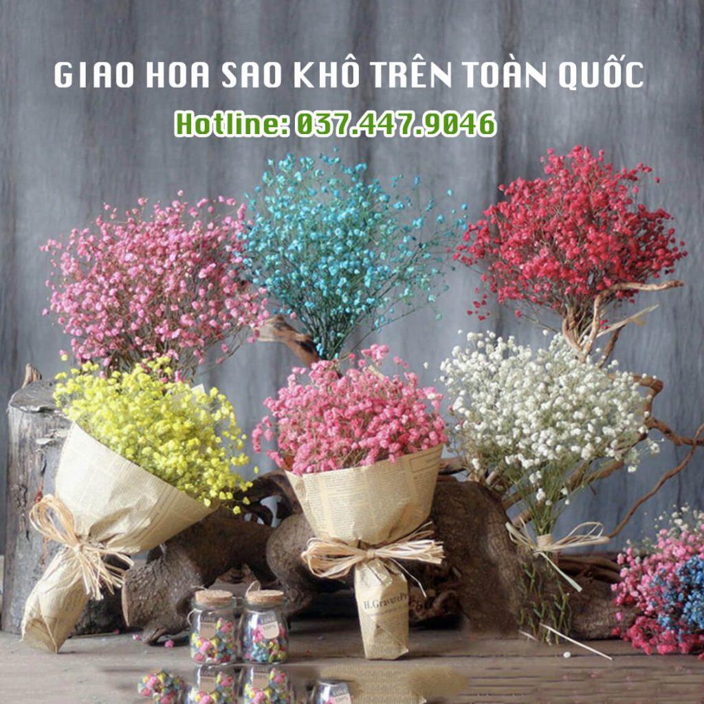 địa chỉ mua hoa sao khô